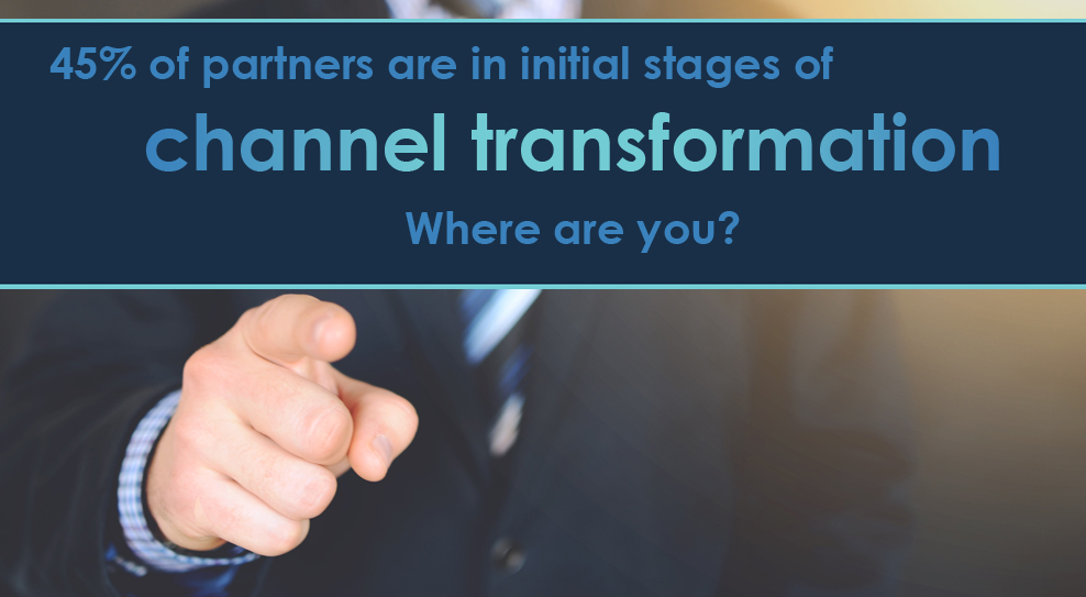 Techaisle data shows channel transformation has been challenging and split in the middle